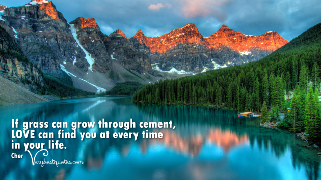 If-grass-can-grow-through-cement-love-can-find-you-at-every-time-in-your-life.
